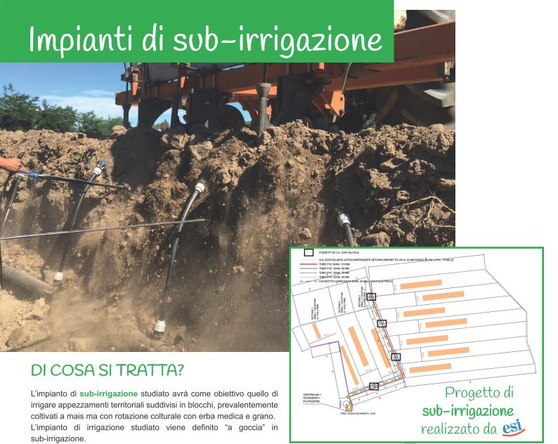 Immagine subirrigazione